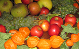 Picture of Harvest fruit